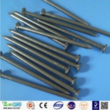 BLACK IRON COMMON NAIL HOT SELLING IN CHINA