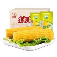 Substitut de repas Huel Candy Corn Sweet Corn