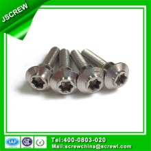 Button Head Stainless Steel Torx Special Screw