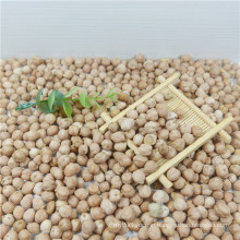 best quality chickpea/chick pea market price HPS