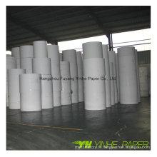 Carton duplex en carton enduit d'argile blanche avec dos gris