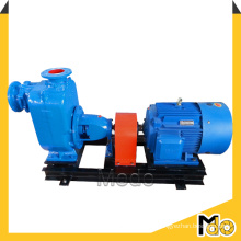Horizontal Self Priming Pump for Pasty Material