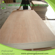 Poplar/Hardwood Core Bbcc Grade 15mm Bintangor Plywood with Cheap Price