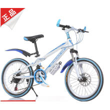 Cool Style Mountain Bike for Young People