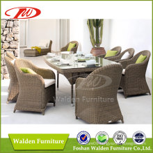 Outdoor Dining Table Set with 8 Chairs (DH-7859)
