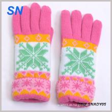 Neue Art-Art und Weise strickte Dame Winter-Handschuh-Großverkauf