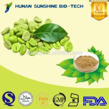 Massenpulver Grüne Kaffeebohne extrahieren Kapseln / reine grüne Kaffeebohne / freie Probe grüne Kaffeebohne