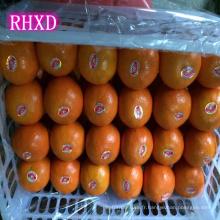 noms tous les fruits en Chine