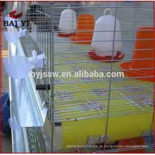 alimentadores de frango duráveis e bebedores com qualidade de venda quente