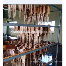 Frozen seafood chinese supplier offer dried squid