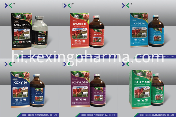 Veterinary Medicine Vitamin B