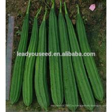 MLU01 Chuanggua сильный жаростойкий гибрид зига люффы семена для посадки