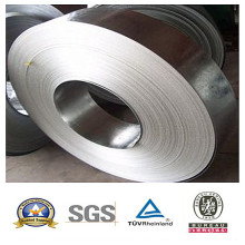 Galvanized Steel Coil for Supplier