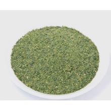 Green Tea Fanning for tea bag