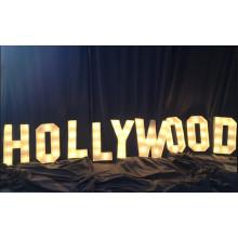 Vintage Art Words/The Light Bulb Word/LED Bulb Channel Letter