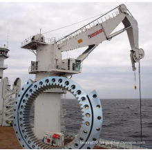 Large Diameter Slewing Ring for Offshore Crane (1787/2650G2)