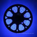 Bandes souples de lumière Led bleue 12V