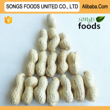 Chinese Raw Peanuts In Shell For Sale