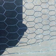 Fabricante de China OEM malha de arame hexagonal / fio de galinha para gaiola de pássaro / arame de aves de capim fio de galinha de malha hexagonal