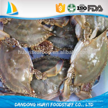 Chinesische frische gefrorene ganze blaue Krabbenverkäufer