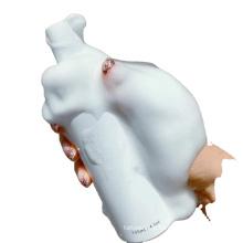 OEM de limpador de clareamento hidratante personalizado particular
