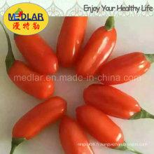 Fruit de loup de mer chinois traditionnel - Perte de poids