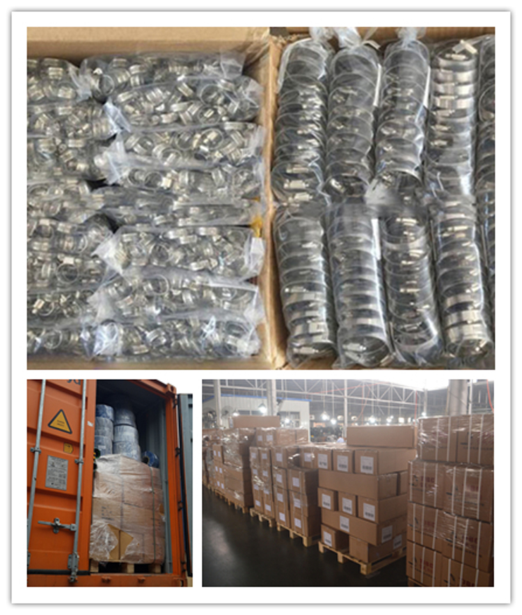 Hose Clamp Packing