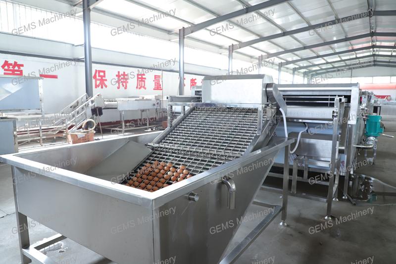 Hard-Boiled Egg Processing