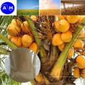 Harina de Soja Aminoácidos Hidrolizados Aminoácidos de Verdura Pura con Cloridión