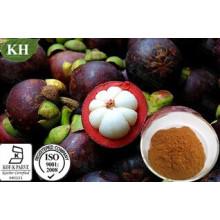 Extrato de Mangostão 100% Natural de Kingherbs: HPLC alfa-Mangostina a 10%, 20%, 30%, 90%; 20%, 27% Polifenol UV;