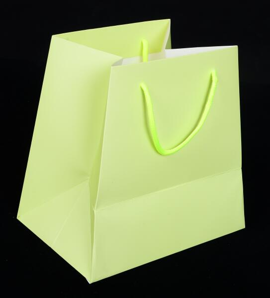 paper bag with matt lamination