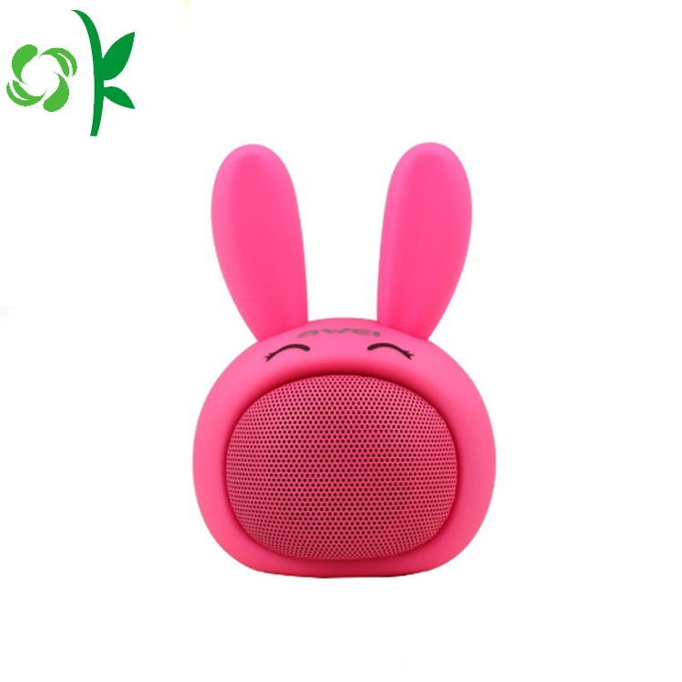 Cartoon Speaker Case