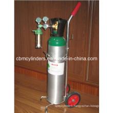 Gauge-Flow O2 Regulator for Oxygen Cylinder Trolley Set