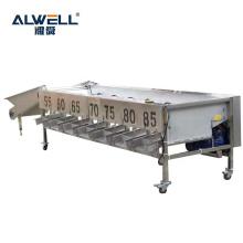 Hot Sale China Fruit Roller Sorting Machine