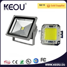 Conducteur de 50W LED Meanwell Floodlight 5 ans de garantie