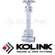 Forged Steel Cryogenic Globe Valve