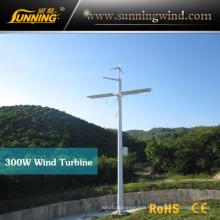 Wind Turbine Wind Power Generator 300W for Monitoring Use