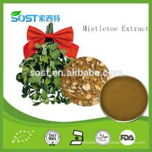 China supply low price Mistletoe Extract / Viscum Album Extract / Hujisheng extract