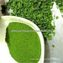 Moringa leaves Powder Supplier