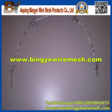 Cheap Double Twist Steel Galvanized Barbed Wires