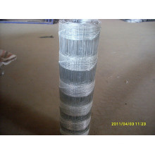High Quality Hog Wire Fence in Competitive Price