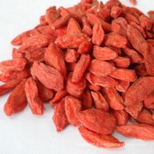 Baies de Goji séchées chinoises, Wolfberry biologique, aliments sains, fruits secs
