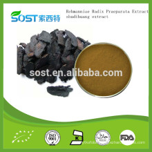 Top quality Rehmanniae Radix Praeparata Extract / shudihuang extract from China