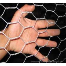 Hexagonal de alambre de malla de malla de aves de corral de valla (XM4-2)