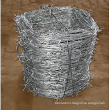 Galvanized Barbed Wire/Electro Galvanized Barbed Wire Manufacture
