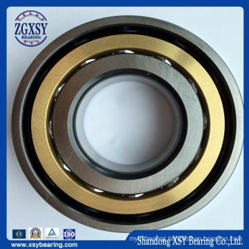 7019c7019AC Water Pump Angular Contact Ball Bearing