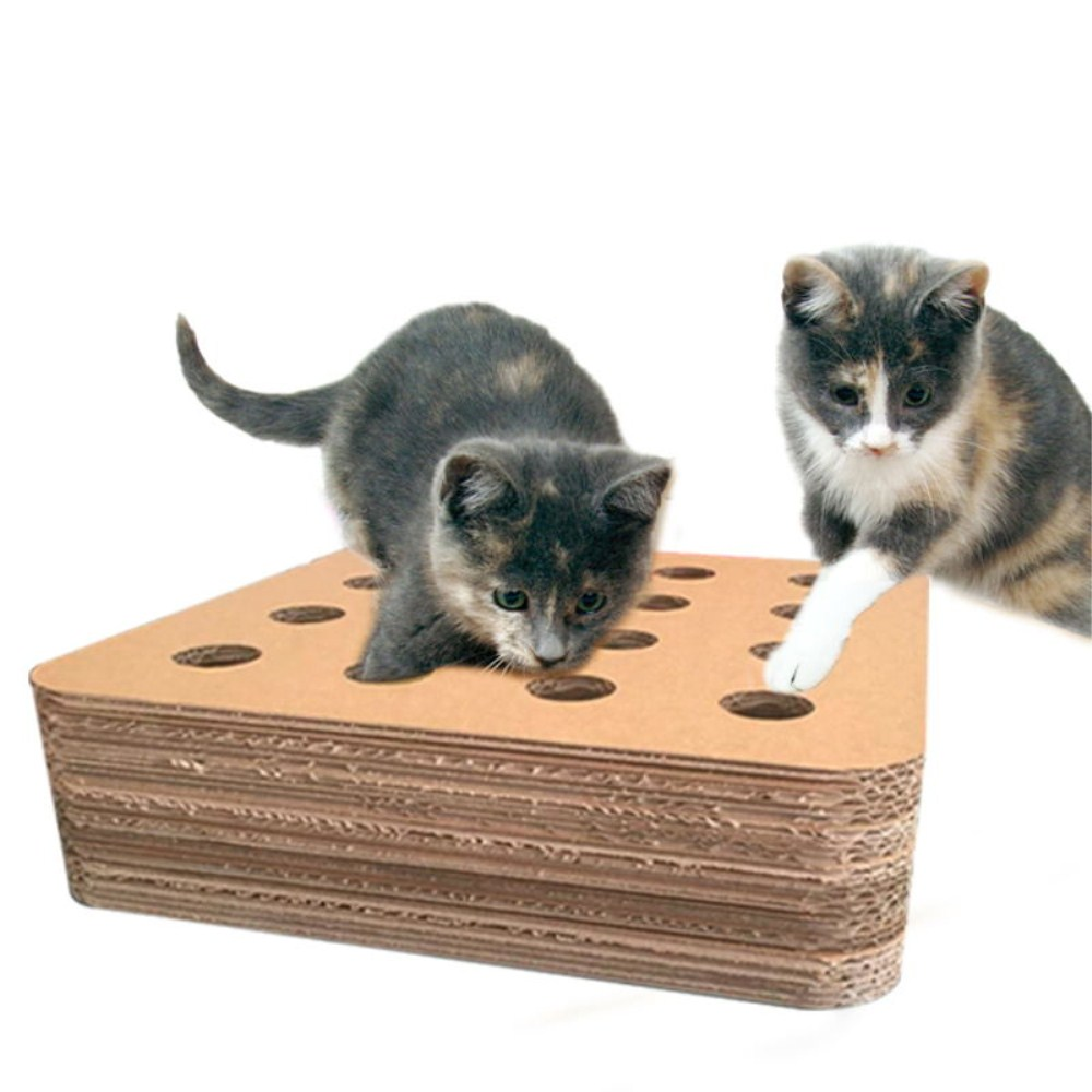 cat toy mystery box