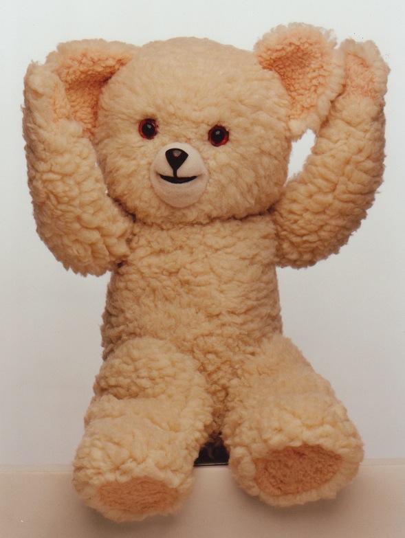 joint bear