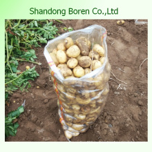 Высококачественный свежий картофель