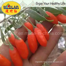 Medlar Skin Care Goji Berry